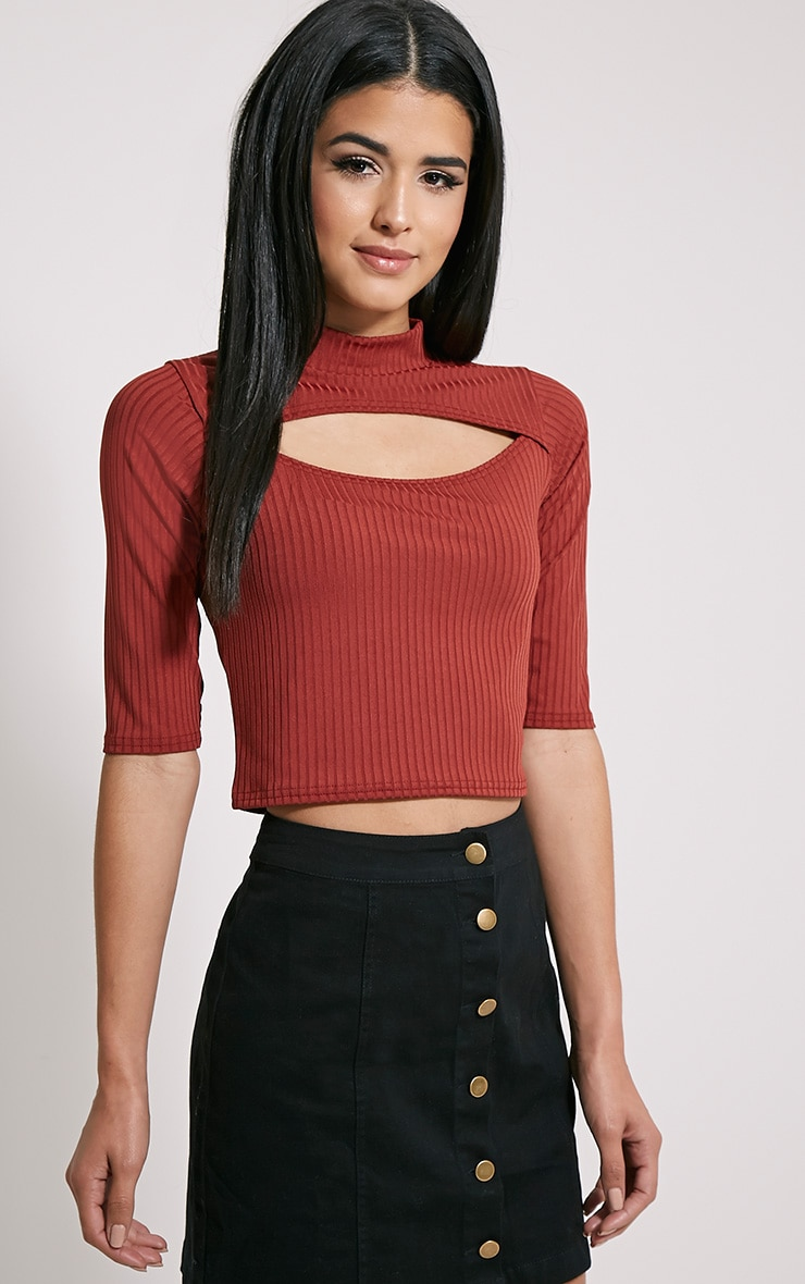 Claire Rust Ribbed Cut Out Crop Top 4