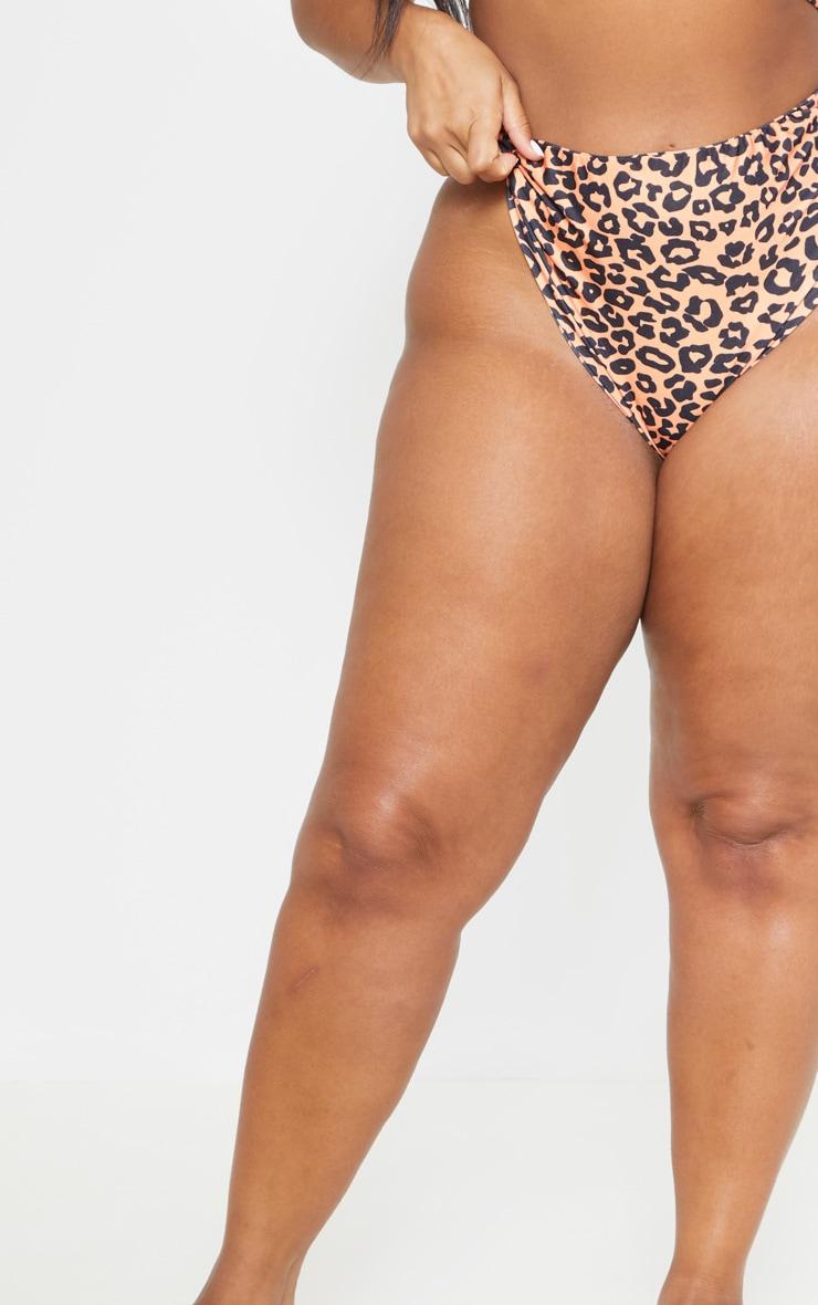 Plus Orange Leopard Print High Rise Bikini Bottom 5