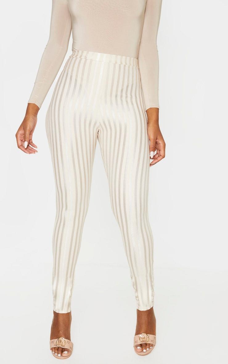 Stone Sheer Stripe Skinny Pants 2