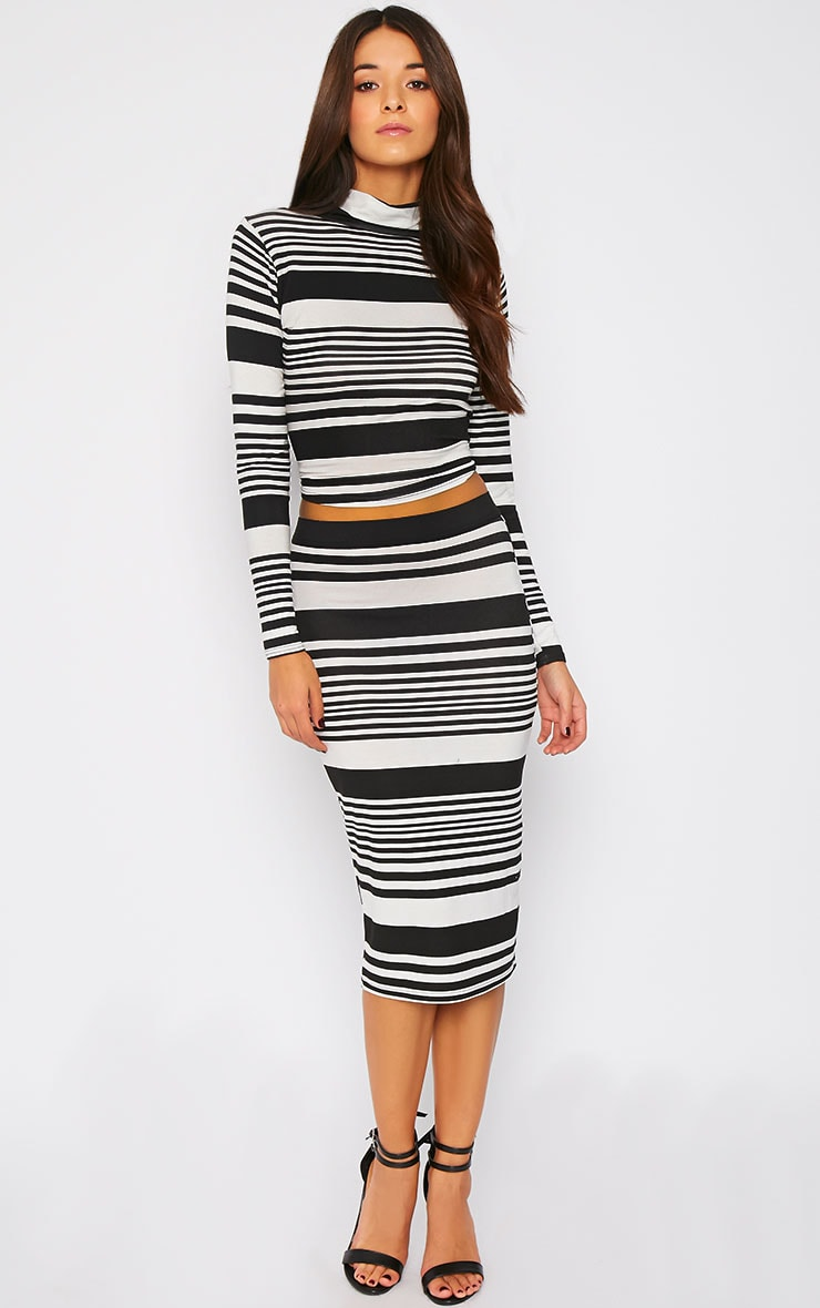 Emlyn Monochrome Striped Turtle Neck Crop Top  3