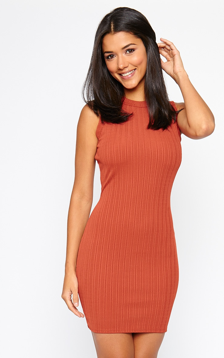 Stefany Rust Ribbed Mini Dress 1