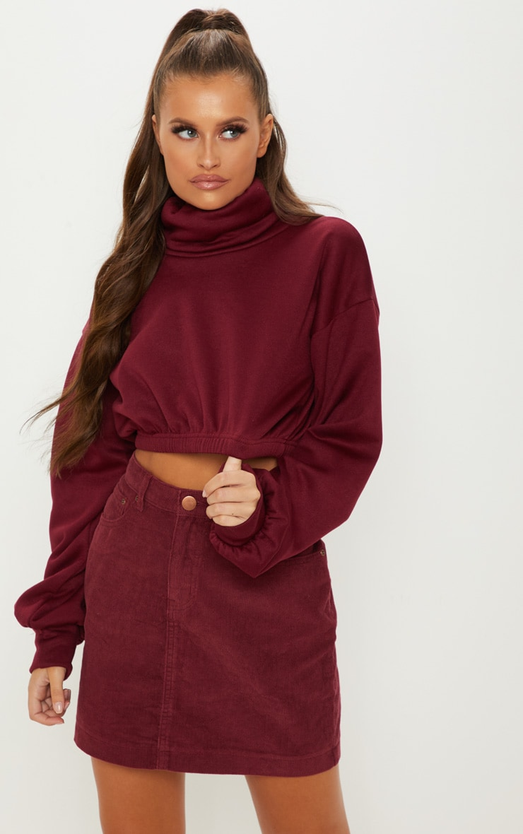 Maroon Roll Neck Crop Sweater