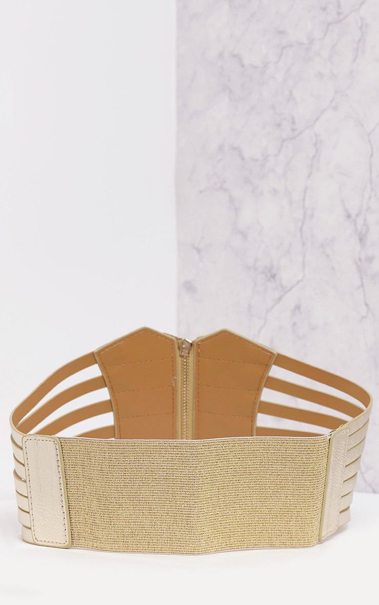 Nikola Gold Zip Detail Corset Style Belt   4