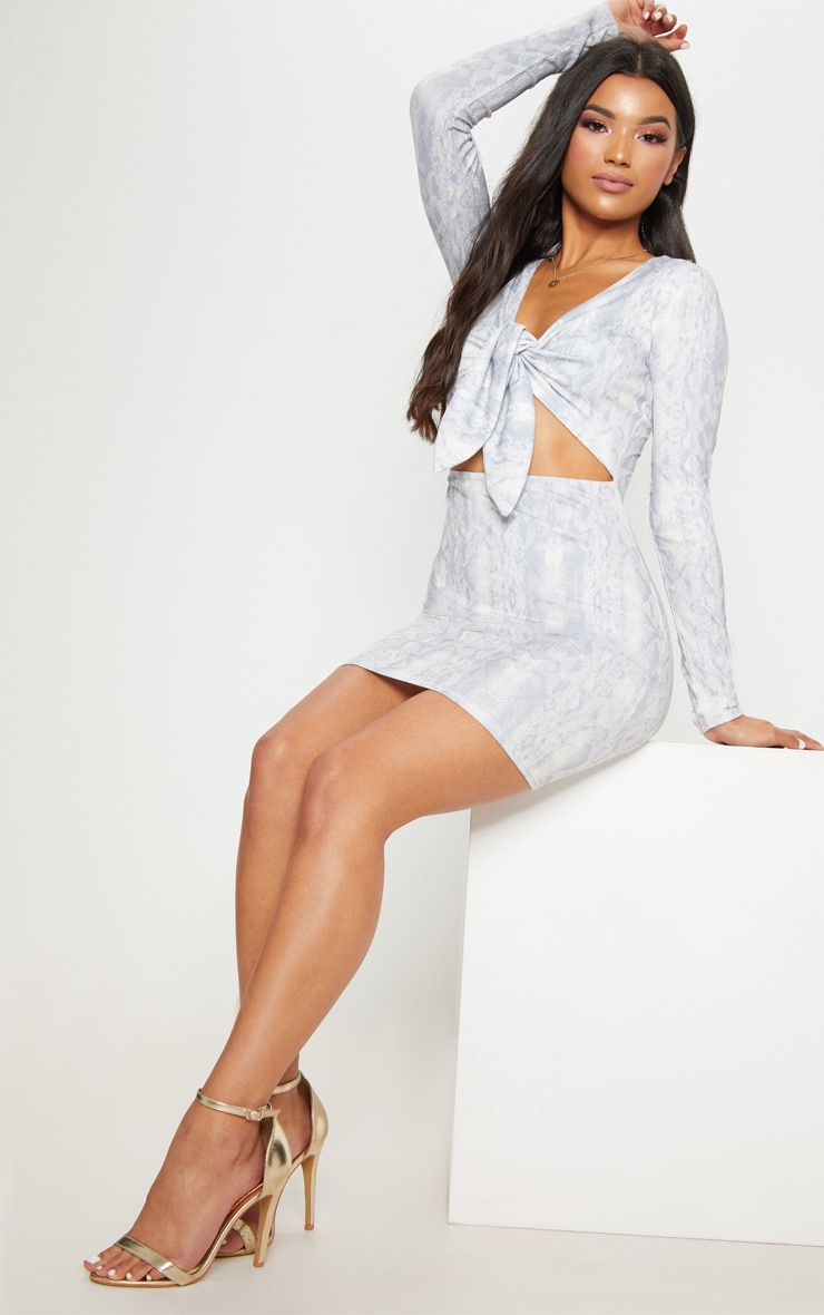 Grey Snake Print Tie Front Long Sleeve Bodycon Dress 3