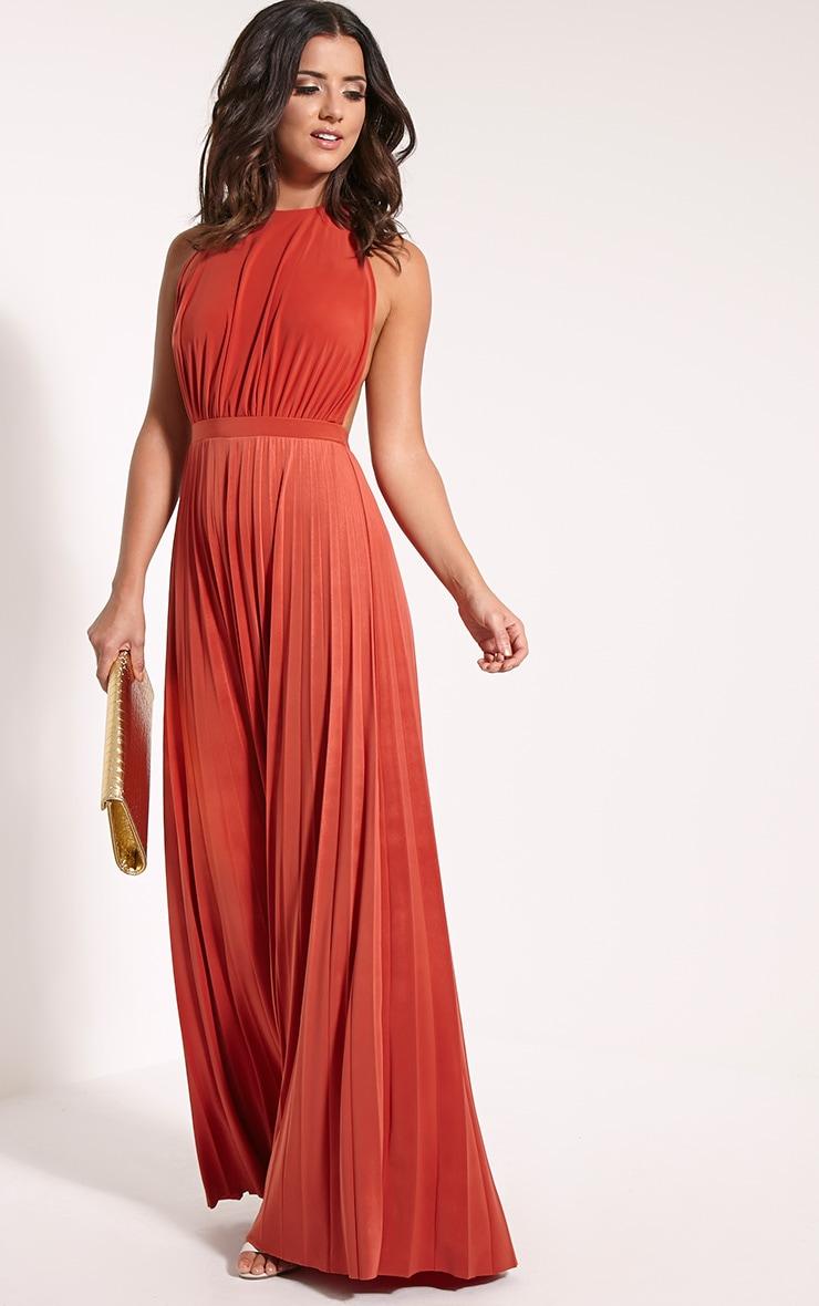 Lorelei Rust Halterneck Pleated Maxi Dress 3