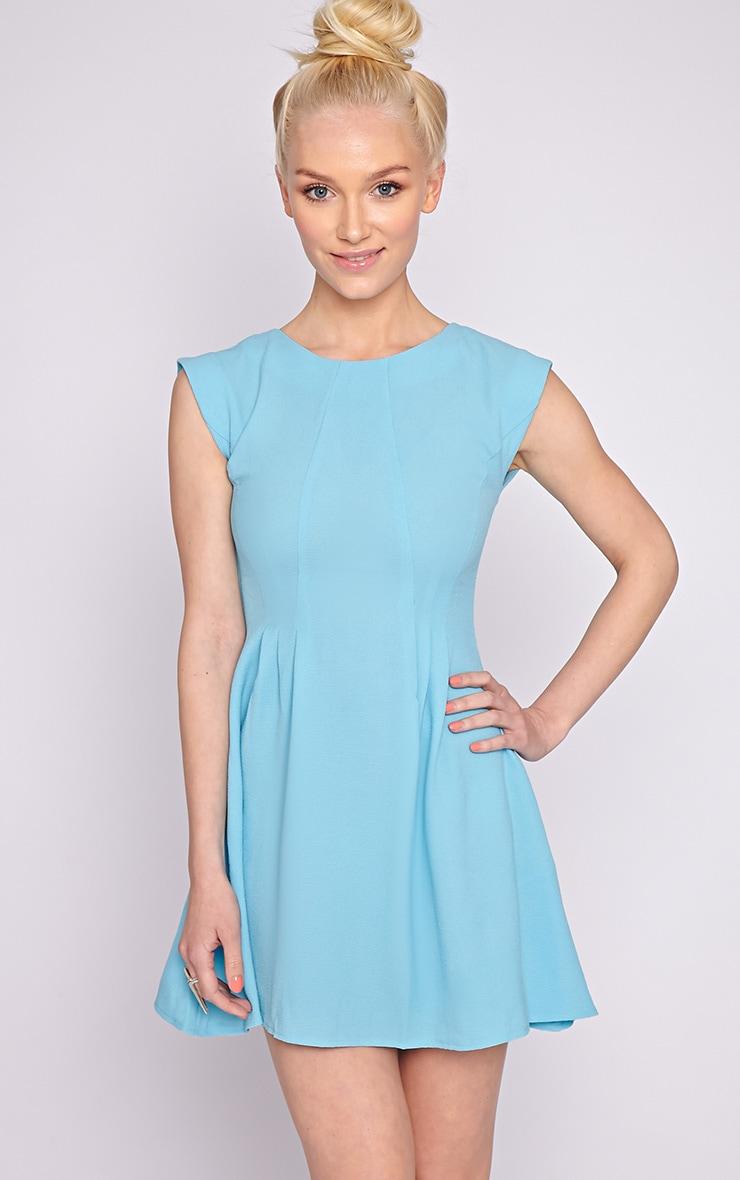 Billie Blue Skater Dress 1