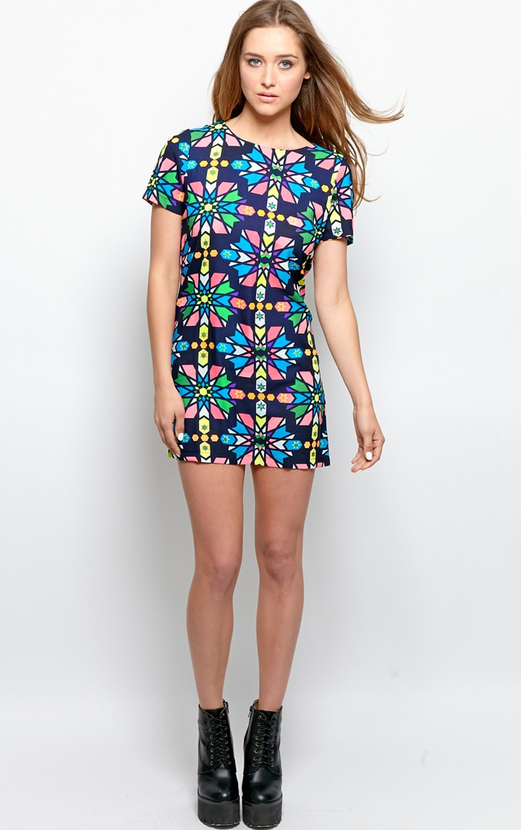 Pixie Navy Abstract Shift Dress 6