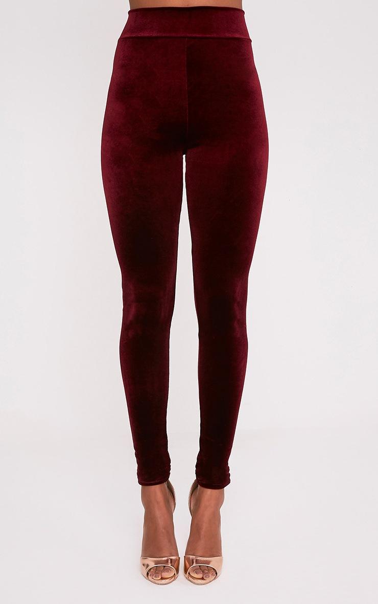 Eryn Berry Velvet High Waisted Leggings 2