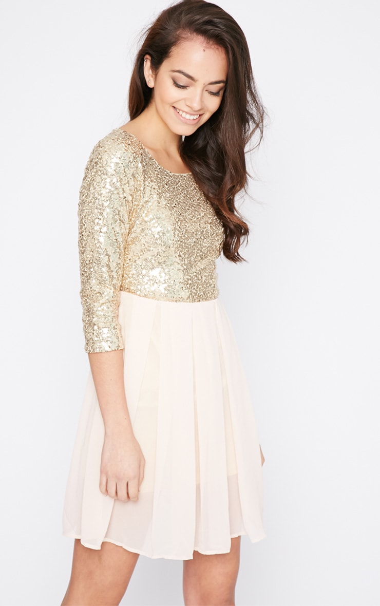 Tiva Gold Sequin Blush Skater Dress 4