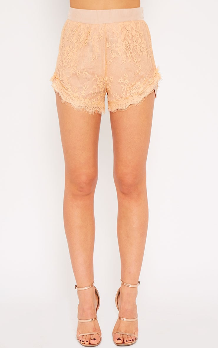 Leif Nude Lace Shorts 2