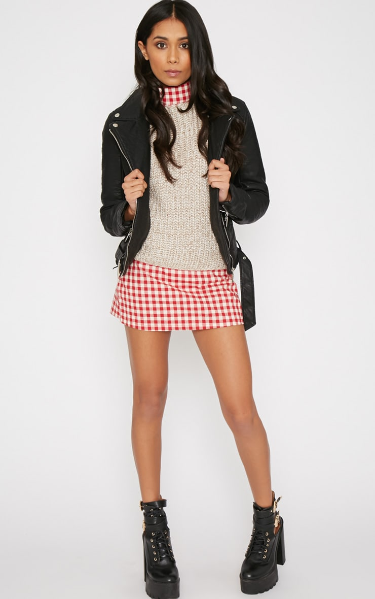 Maddie Red Checked Skirt 5