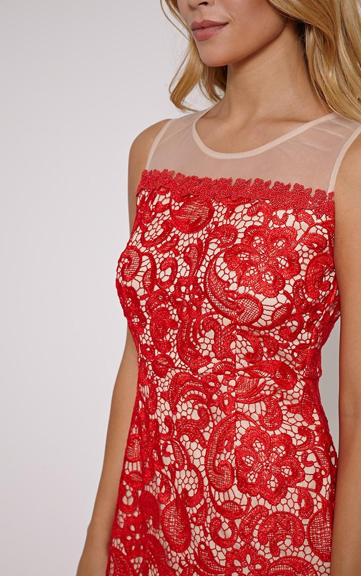 Florine Red Mesh Lace Mini Dress 5