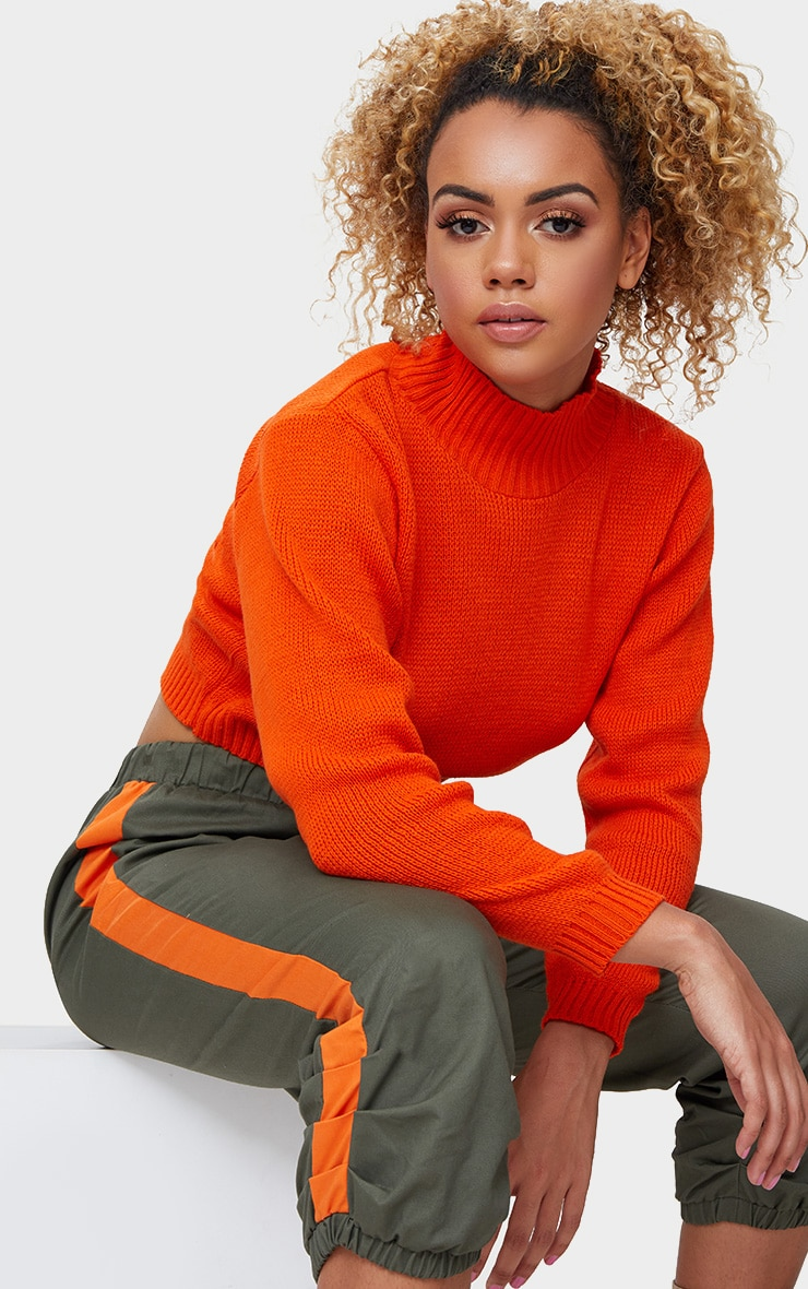 Orange High Neck Soft Knit Cropped Jumper 1