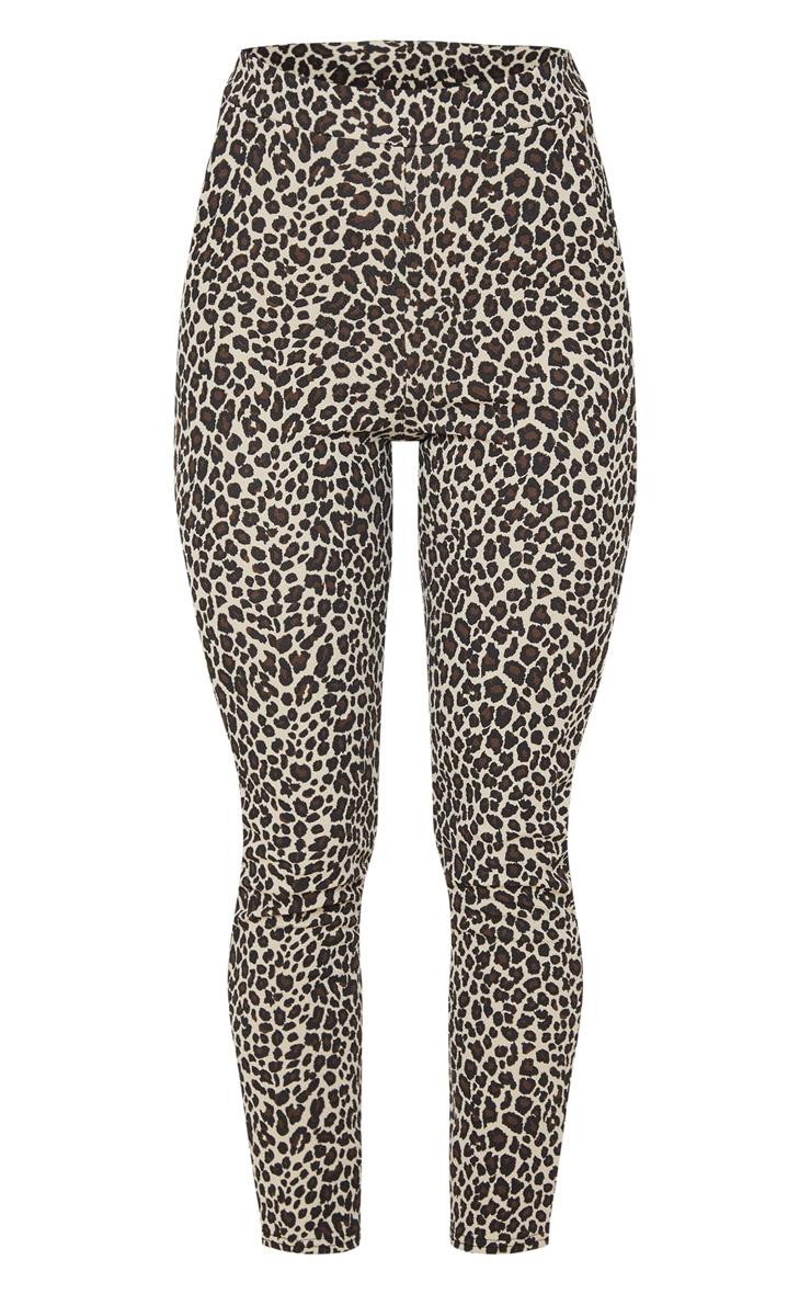 Stone  Leopard Skinny Pants 3