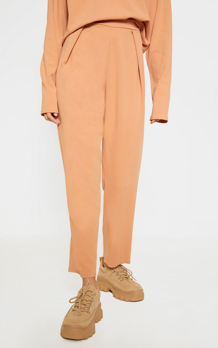 Pale Tan High Waisted Pleat Detail Tapered Trouser 2