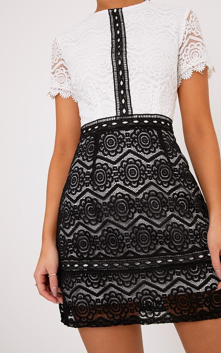 Anita Monochrome Lace Shift Dress 5