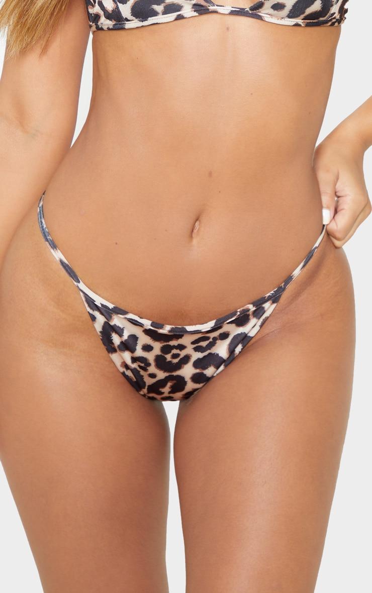 Petite Itsy Bitsy Leopard Print Bikini Bottom 6