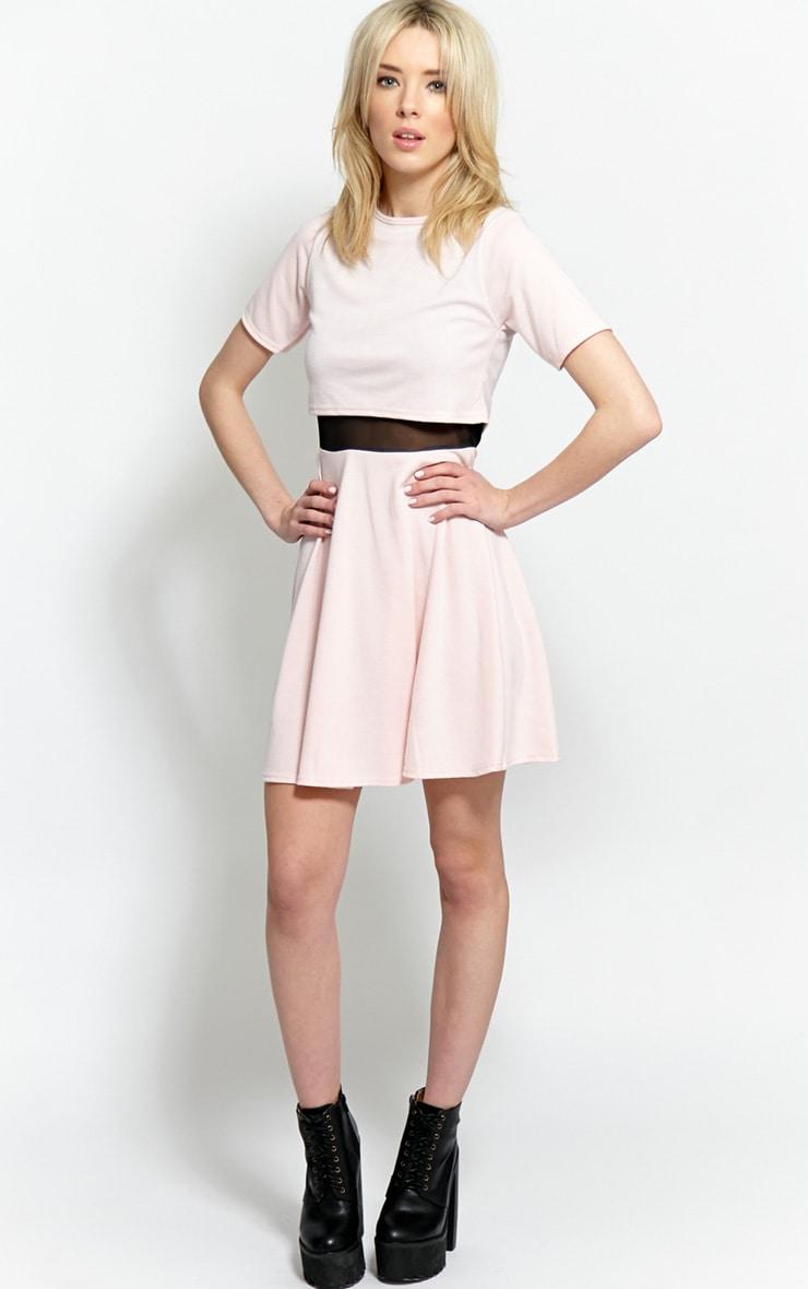 Suzie Pink Mesh Skater Dress 3