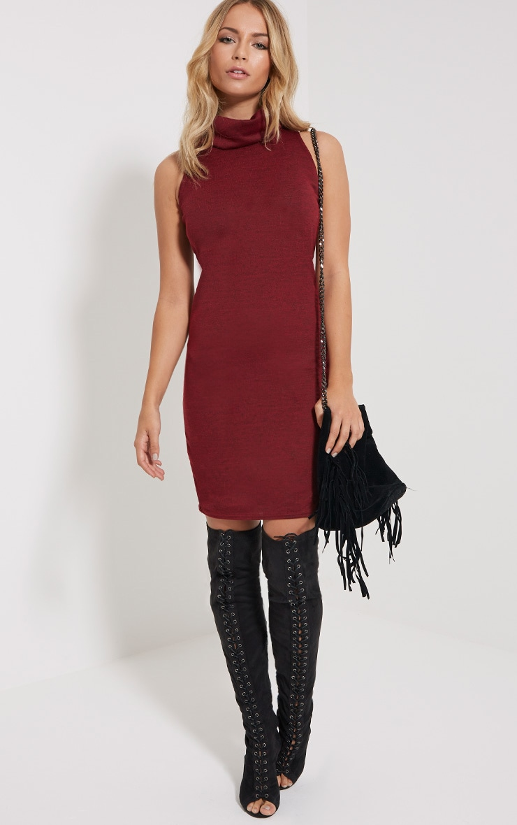 Yelena Wine Knitted Marl Roll Neck Dress 3
