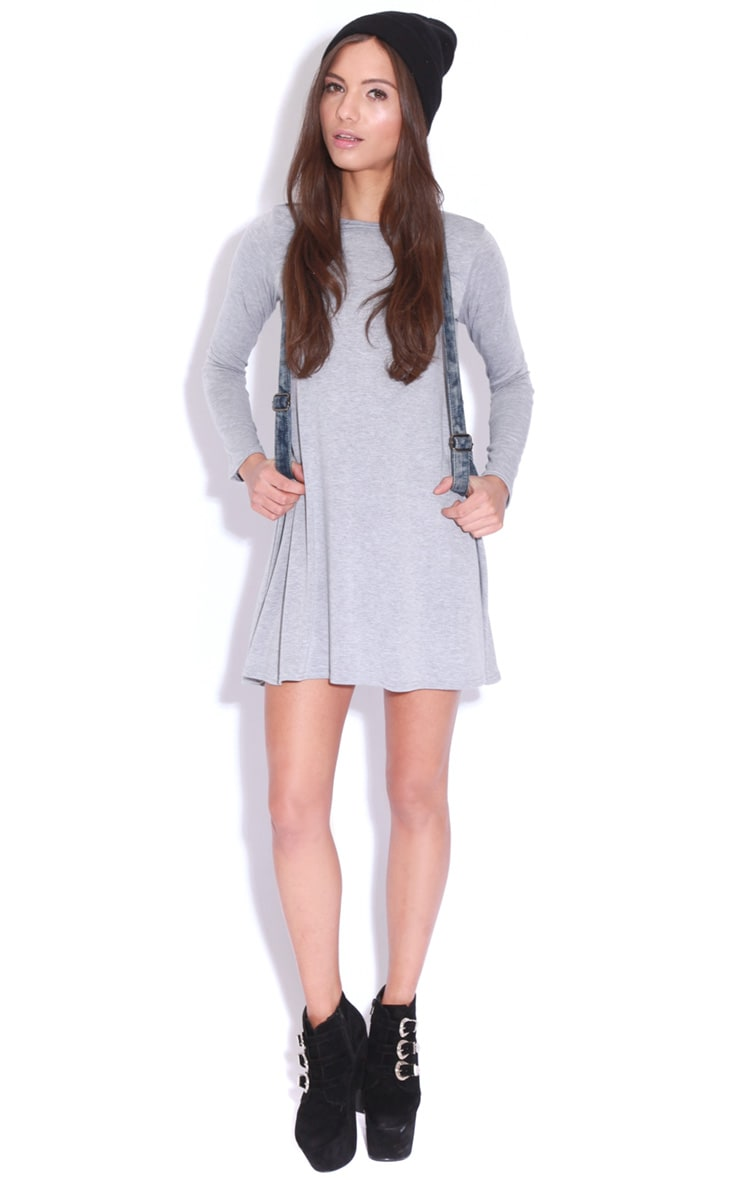 Ellie Grey Long Sleeved Swing Dress 3