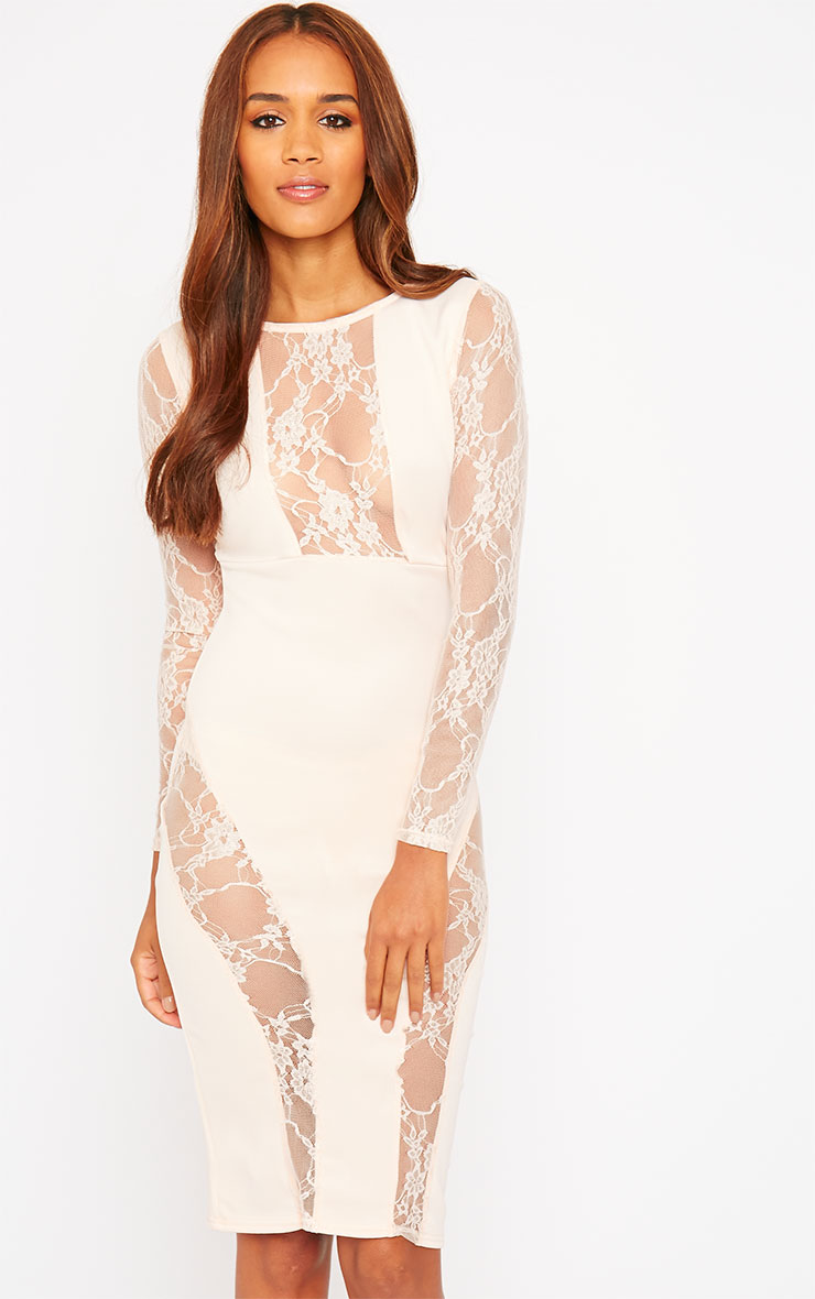 Perla Nude Lace Insert Dress 1