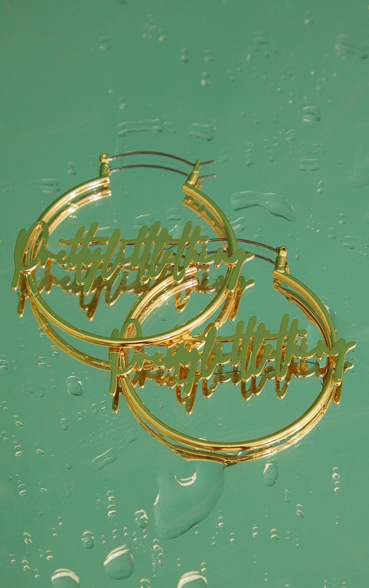 PRETTYLITTLETHING Signature Hoop Earrings 4