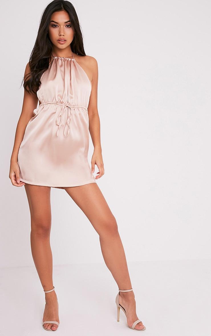 Raiane Champagne Silky Halterneck Shift Dress 5