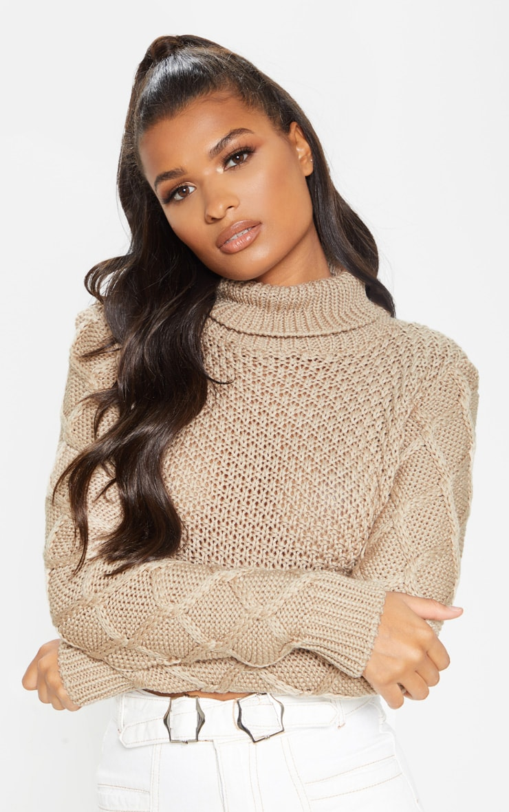 Stone Roll Neck Cable Sleeve Cropped Jumper 1