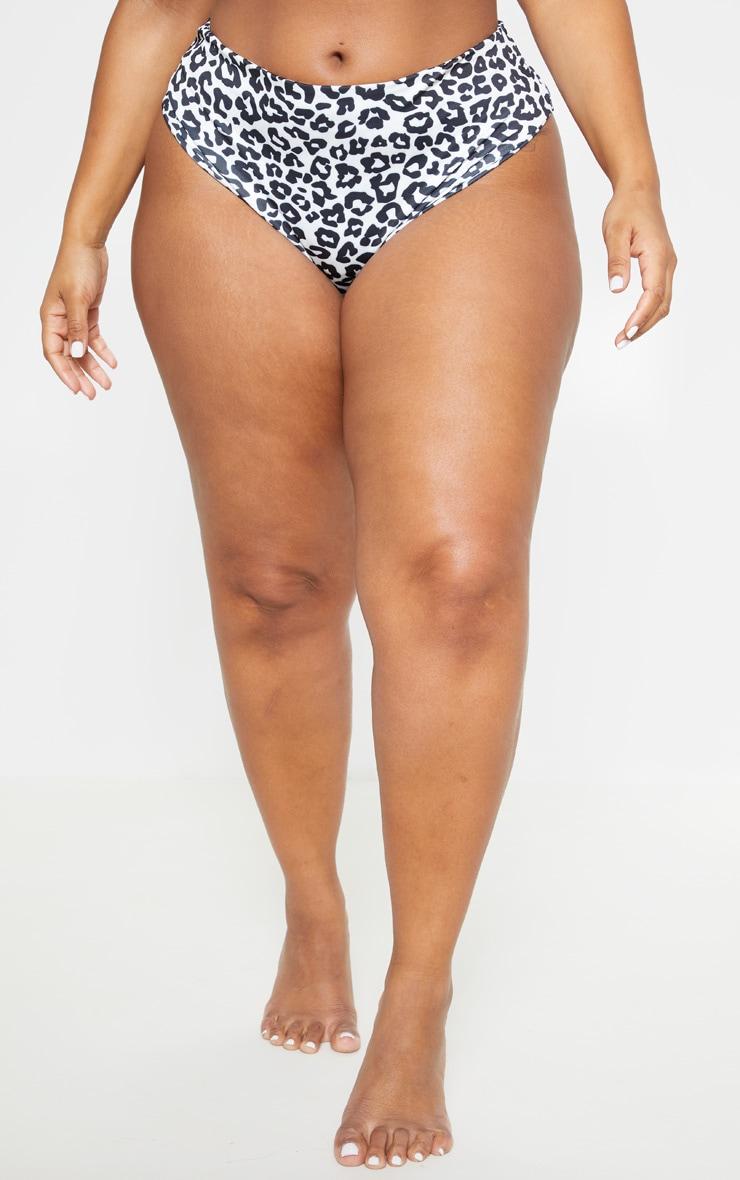 Plus White Leopard Print High Rise Bikini Bottom  2