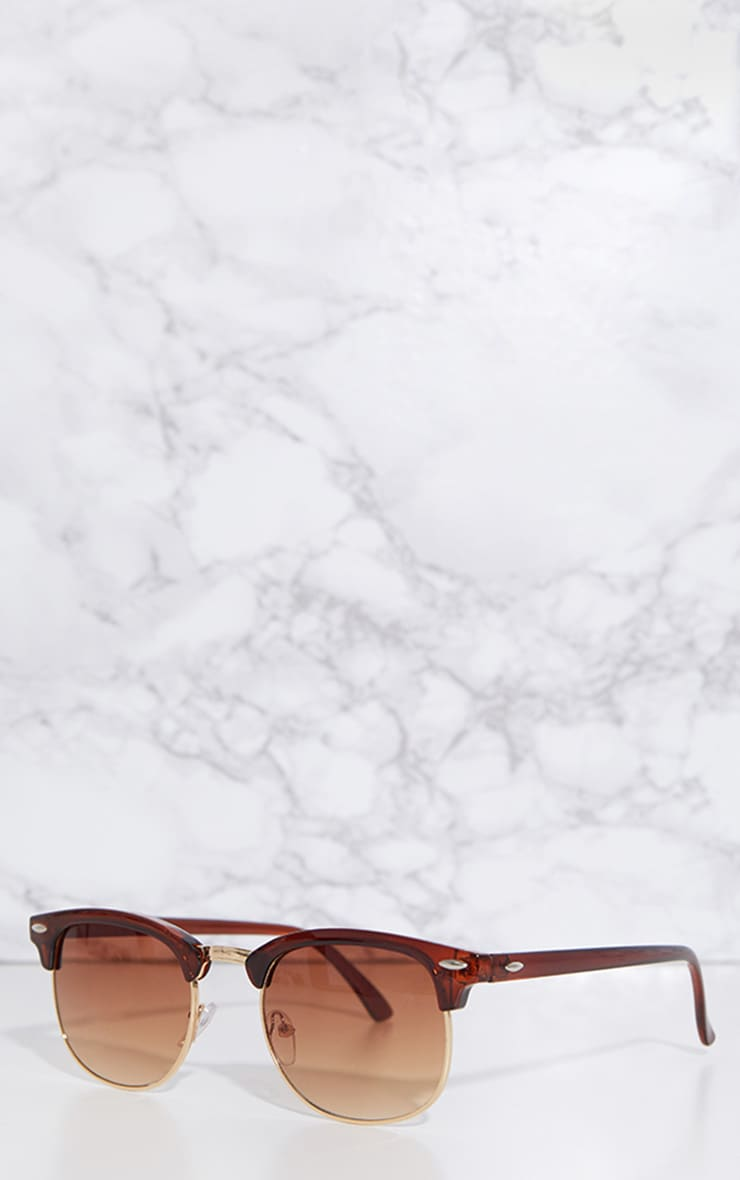 Brown Classic Retro Sunglasses 2