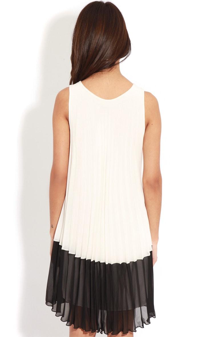 Alexa Monochrome Pleated Dress 2
