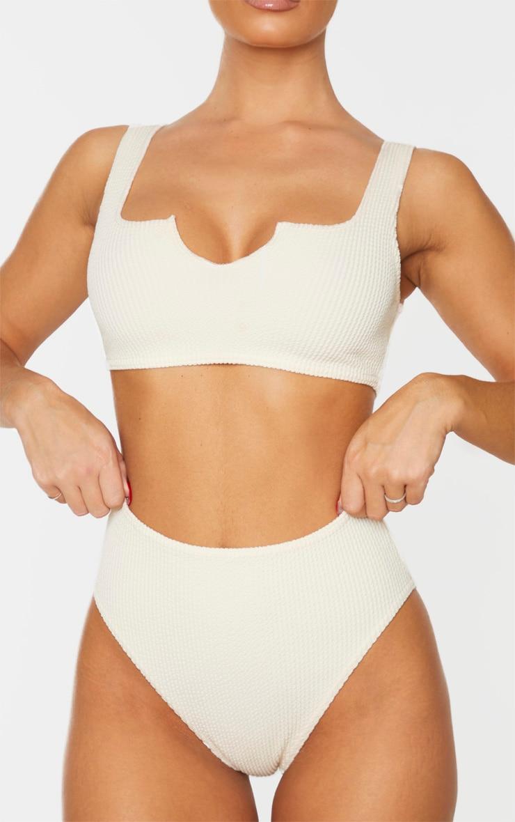 Stone High Waist Crinkle Bikini Bottom 1