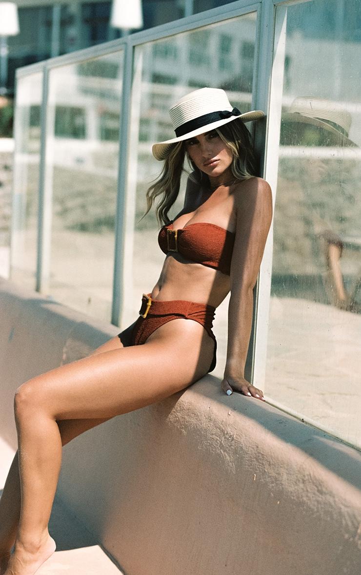 Brown Wooden Buckle High Waist Bikini Bottom 2