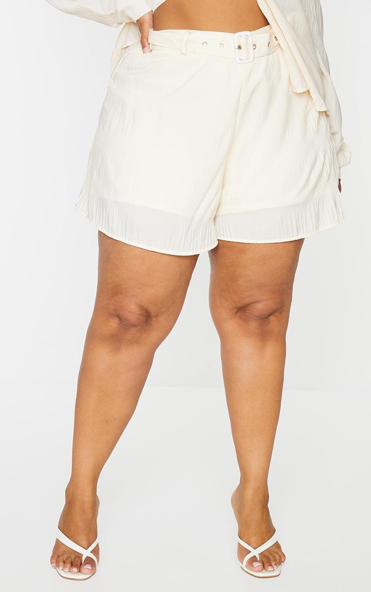 Plus Stone Textured Plisse Floaty Shorts 2