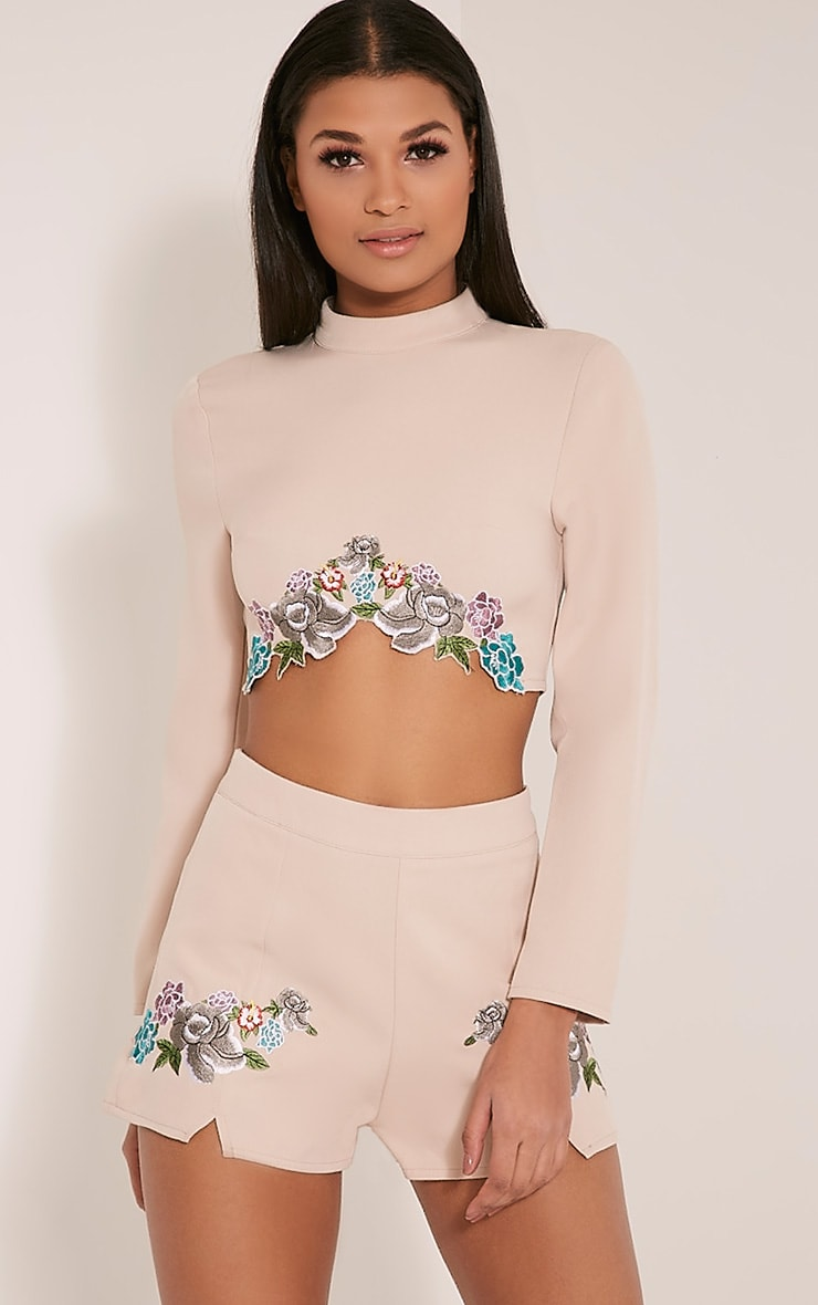 Angie Nude Floral Embroidered Crop Top 1