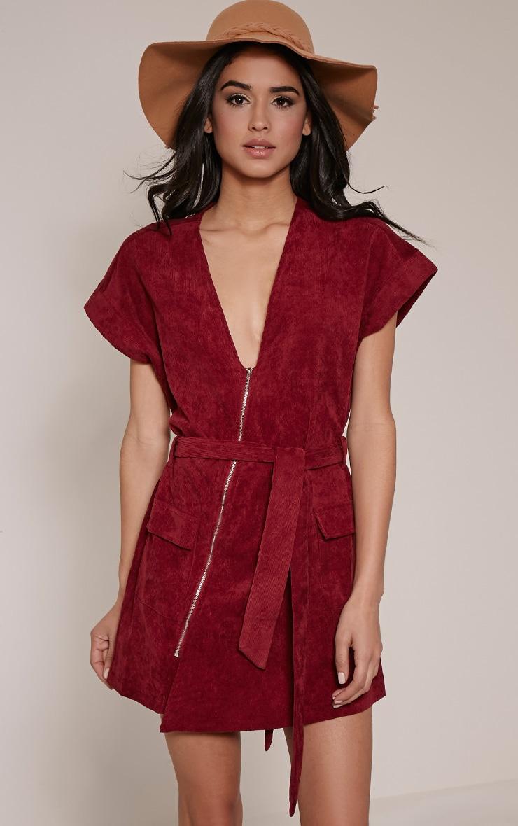 Tammie Burgundy Zip Front Tie Waist Mini Dress 1