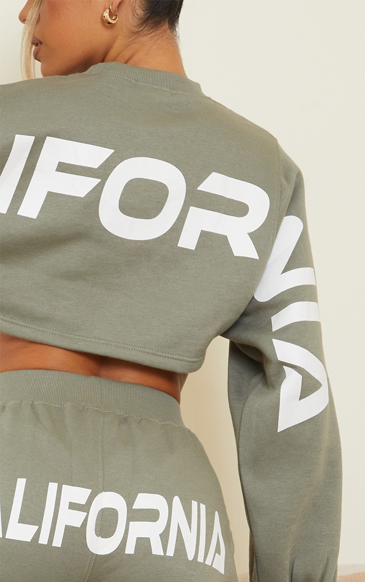 Sage Green California Printed Back Cropped Sweater 4