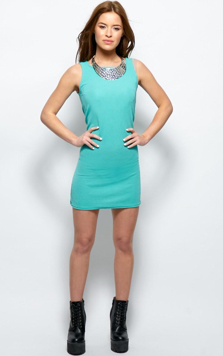Ashton Green Premium Shift Dress 3