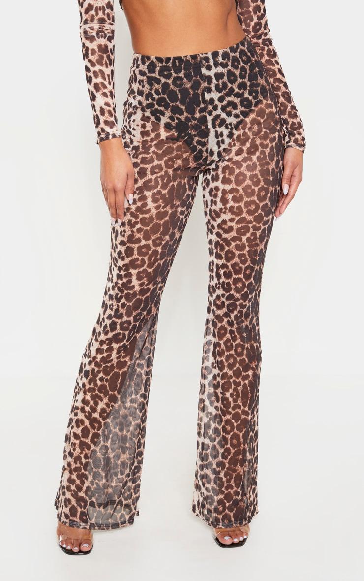 Brown Leopard Print Sheer Mesh Flares 2
