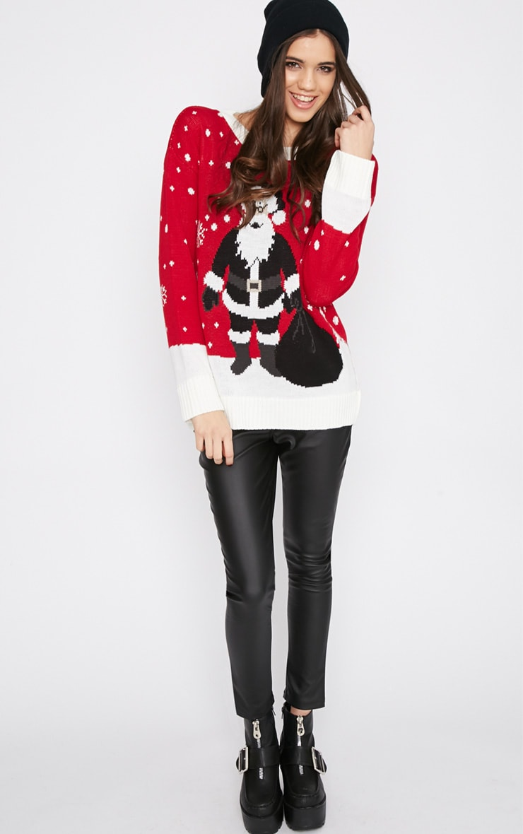 Reny Red Father Christmas Jumper 3