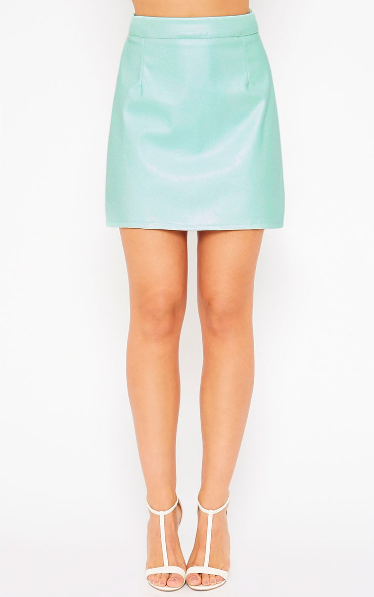 Rose Mint Faux Leather A-Line Mini Skirt 2
