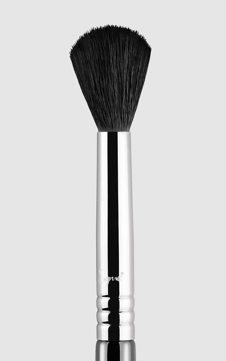 Sigma E40 Tapered Blending Brush 2