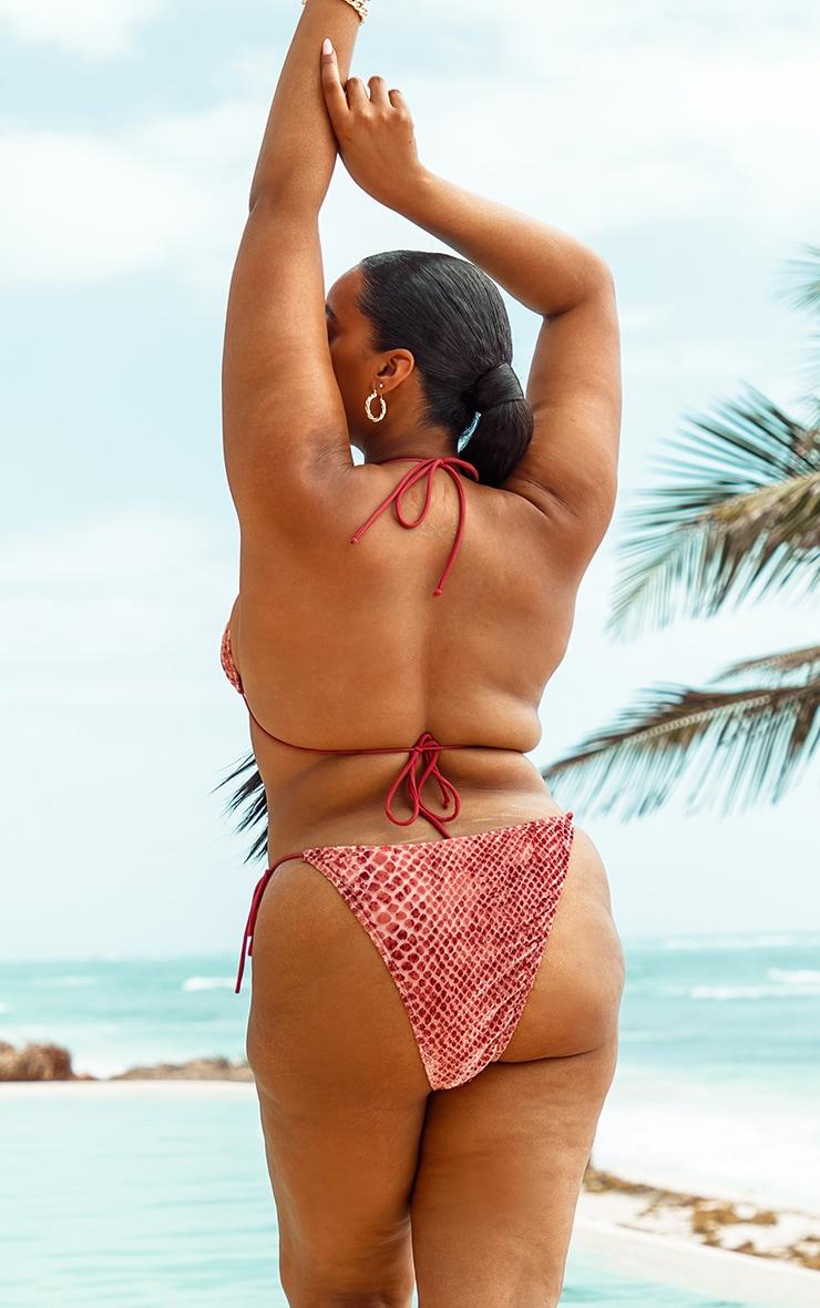 Plus Rose Devore Triangle Bikini Top  2