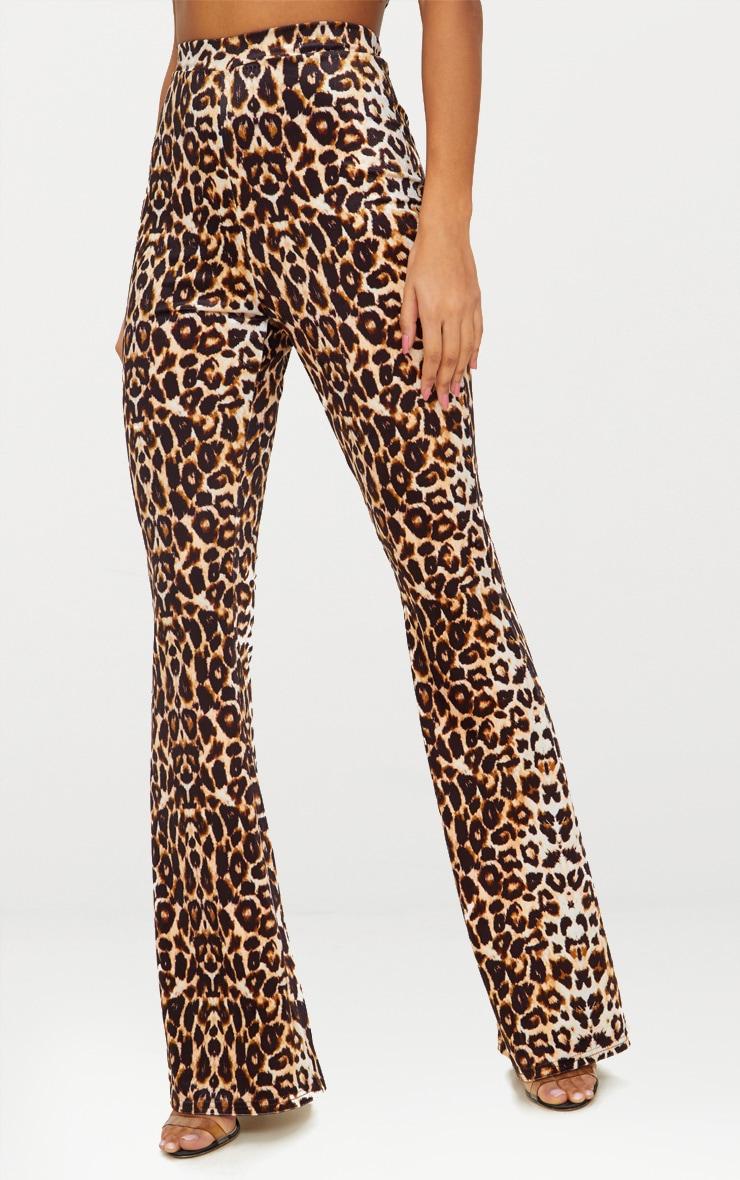 Leopard Print Velvet Flared Pants 2