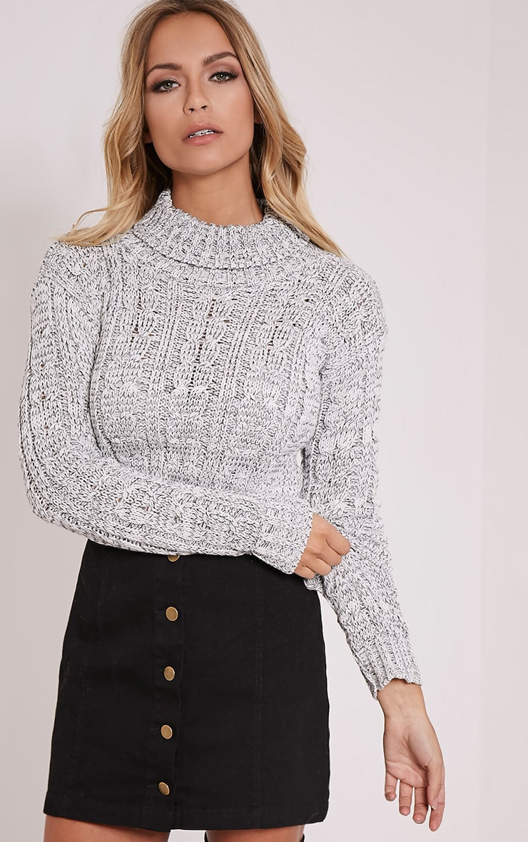 Brook Grey Cable Knit Roll Neck Crop Jumper 1