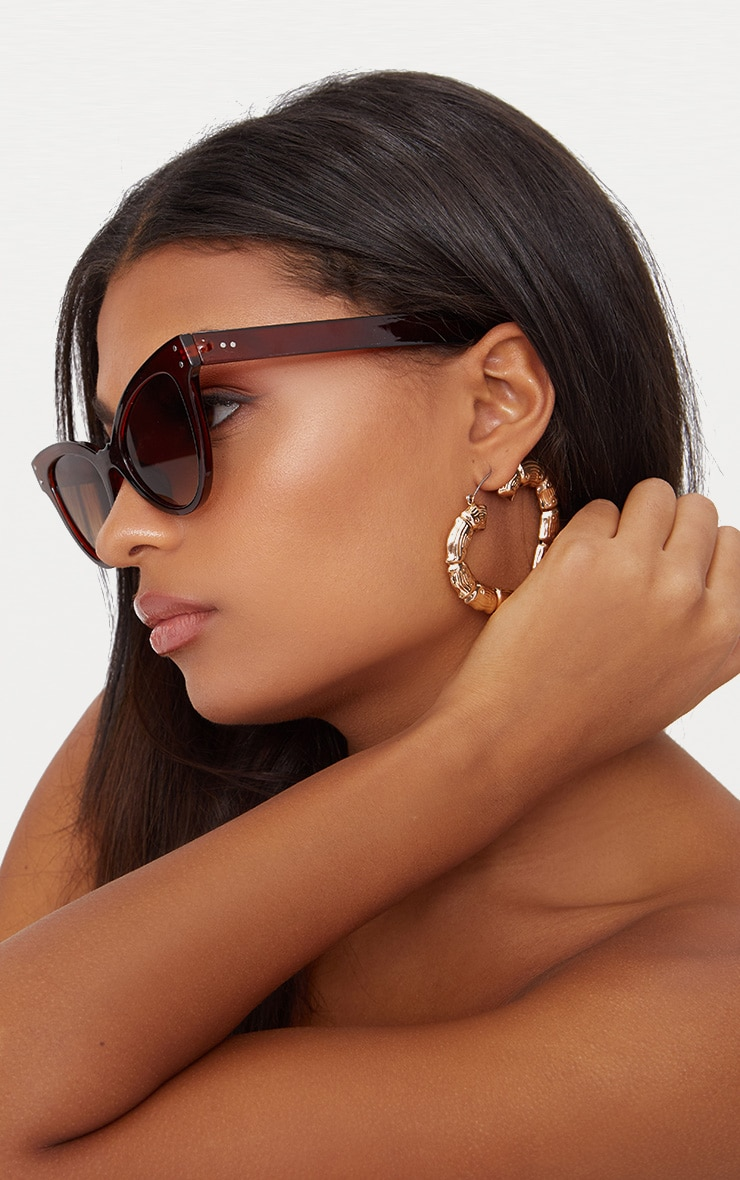 Brown Acrylic Cat Eye Sunglasses 2