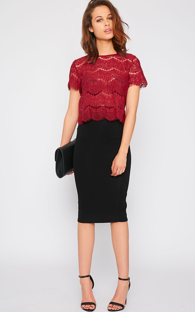 Ninette Wine Lace Crop Top  3