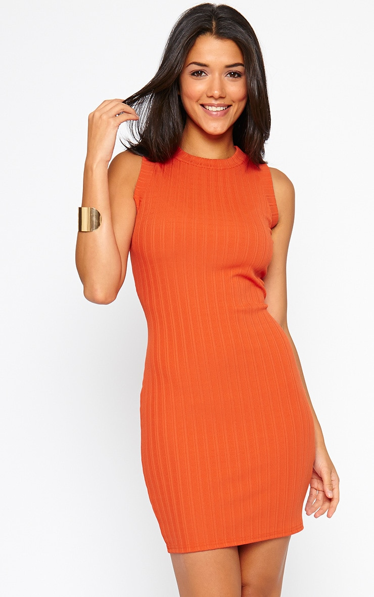 Stefany Orange Ribbed Mini Dress 1