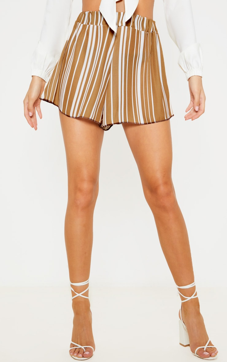 Taupe Base Stripe Lightweight Print Floaty Short  2