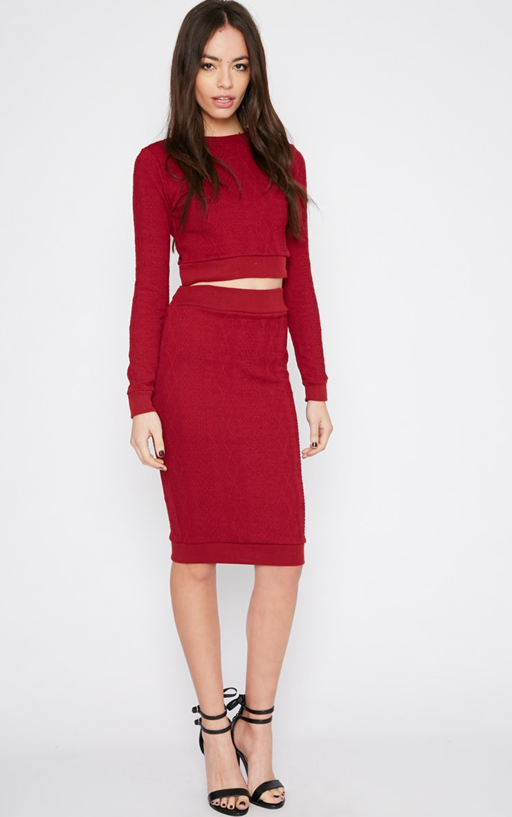 Deni Red Cable Knit Midi Skirt 1